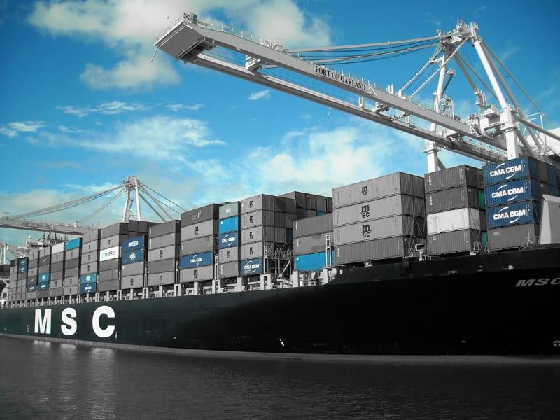 MSC - nowy nabytek firmy