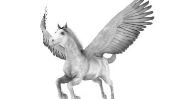 Spedycja lotnicza: ULD…dla koni