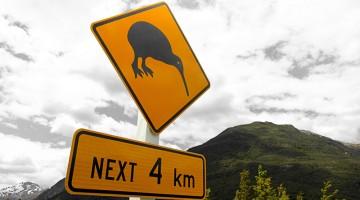 Kurs na Antypody: eksport do Nowej Zelandii