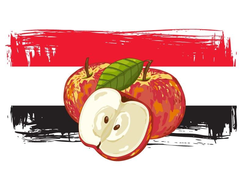 Eksport jabłek do Egiptu