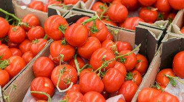 Transport żywności – wskazówki i błędy